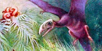 L'allevatore di dinosauri, ovvero L'uovo di pterodattilo
