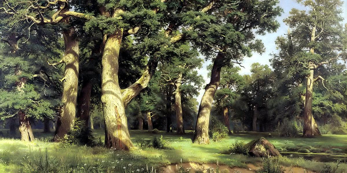 Oak grove di Ivan Ivanovič Šiškin