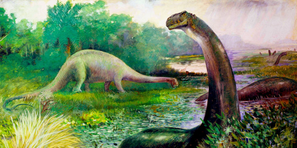 Illustration of Brontosaurus in the water, and Diplodocus on land (1897). Charles R. Knight
